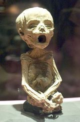 Fetal Mummy--advertised as the world's smallest